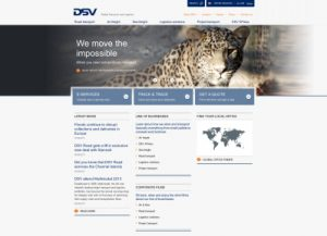 dsv uk website small