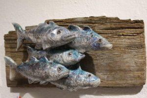 Shoal of five fish on driftwood. By Richard Ballantyne