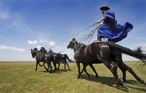 Superb horsemanship at Hortobágy horse show