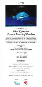NIKOS KYPREOS' Fish 16042014