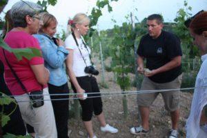 Jaroslav Macik shows visitors round his Tokaj vineyard.