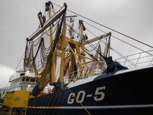 Maaskant pulse fishing system (1)