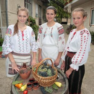 Harvest time at Casa din Lunca Guest House, Moldova.