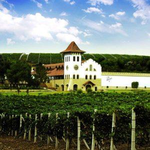 Chateau Purcari Winery, Moldova.