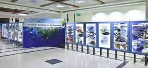 HELMEPA's new exhibition