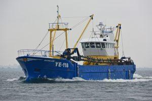 Noordland YE-118_LR