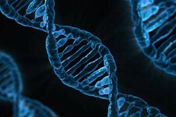 Human DNA. Credit: Creative Commons CC0
