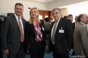 D. E. Patrikios, P. Palaiologou, L.A. Chahalis