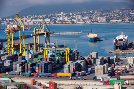 The maritime sector, which includes shipping, ports and the people that operate them, can and should play a significant role helping Member States to create conditions for increased employment, prosperity and stability ashore through promoting trade by sea; enhancing the port and maritime sector as wealth creators both on land and, through developing a sustainable blue economy, at sea.