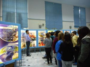 Students' guided tour of the Exhibition